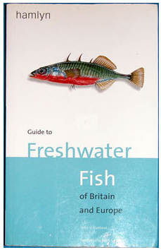 THE HAMLYN GUIDE TO THE FRESHWATER FISHES OF BRITAIN AND EUROPE  by Peter Maitland