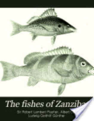 The Fishes of Zanzibar