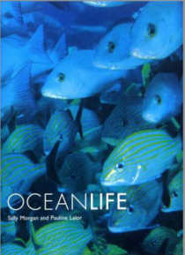 OCEANLIFE. By Sally Morgan and Pauline Lalor.