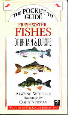 The Pocket Guide to the Freshwater Fishes of Britain and Europe - Wheeler